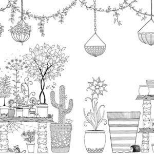 coleccion-de-plantas