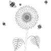 girasol-del-jardin