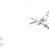 herrerillo-comun-guia-aves