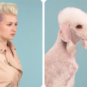 bedlington-terrier-con-su-humano